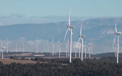 Apostamos por una alternativa energética que conserve la biodiversidad