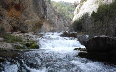 Un año a favor de los paisajes de Teruel